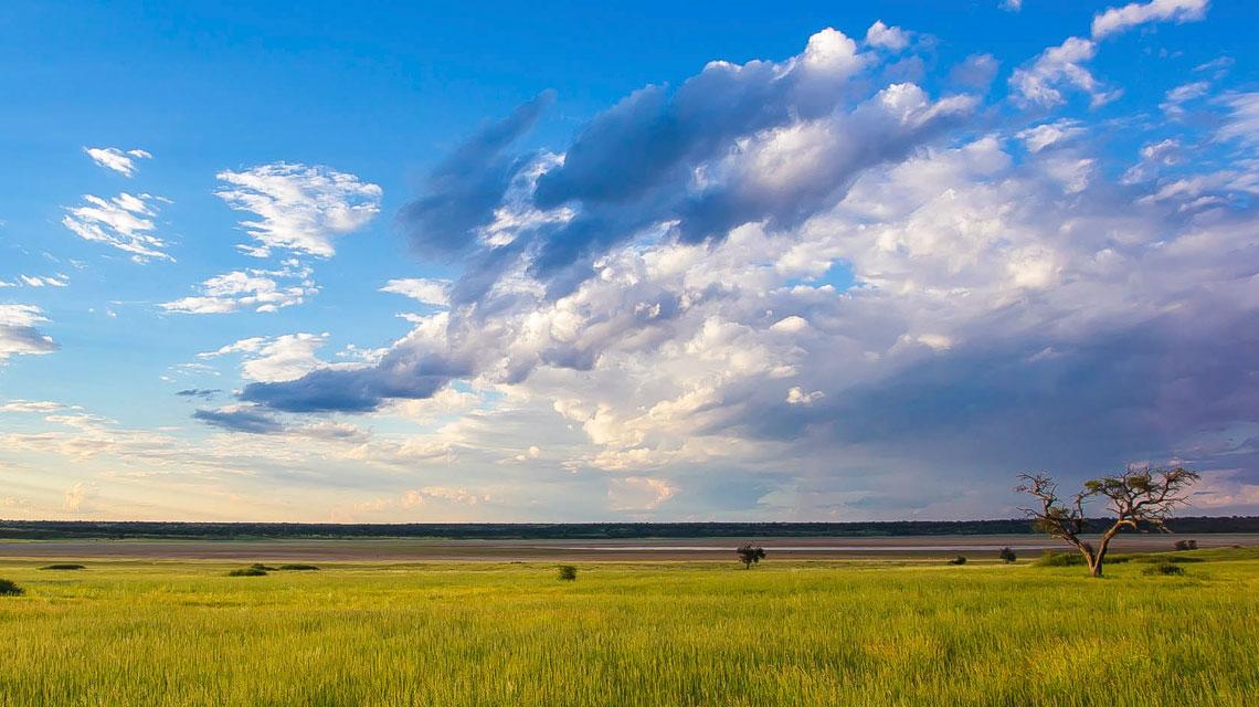 Mabuasehube-Pan,-Kgalagadi-Transfrontier