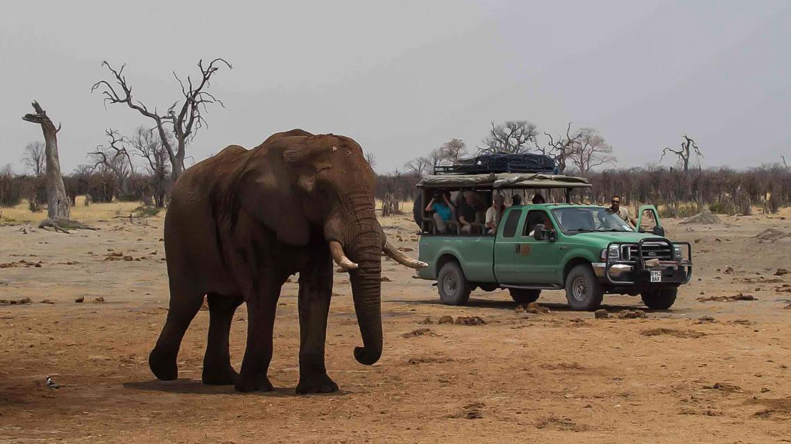 Maribu-Pan,-Savuti,-Botswana