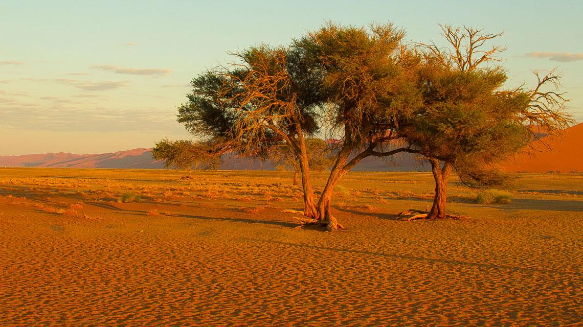 Sossusvlei,-Namib