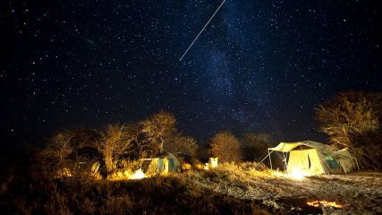 5-Day Moremi Game Reserve